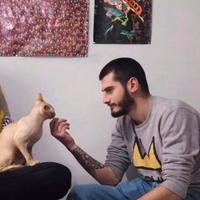 გიორგი, 27 лет, Дева, Тбилиси